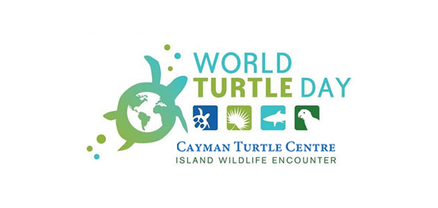 World Turtle Day Poster