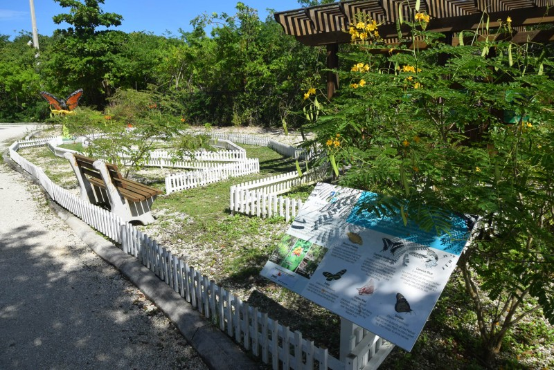 Renovation of Butterfly Garden and Aviary enclosure underway