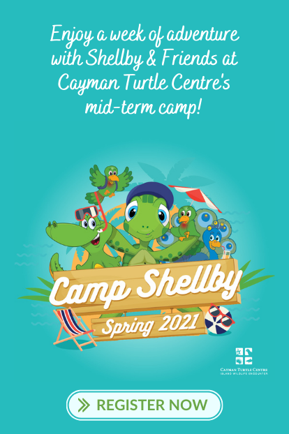 https://www.turtle.ky/cache/Offers/414_414/Camp_Shellby_Feb_Web.png