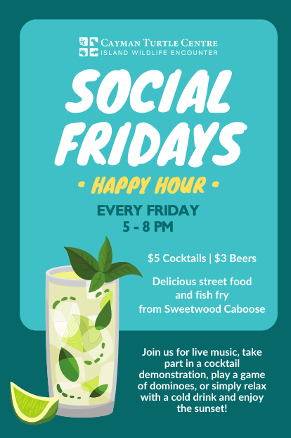 https://www.turtle.ky/cache/Offers/414_414/Happy_Hour_Web.png
