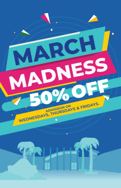 https://www.turtle.ky/cache/Offers/414_414/March_Madness_-_Website_Graphic.png