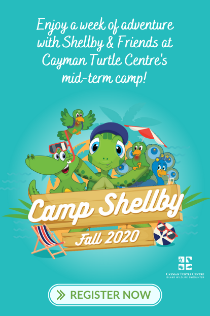 https://www.turtle.ky/cache/Offers/414_414/Website_promotion_-_Camp_Shellby_Fall.png