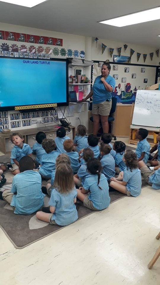 Teaching session with Shona at Cayman Turtle Centre