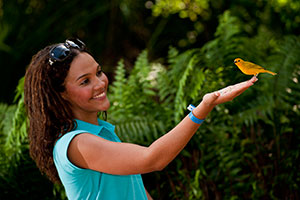 Explore nature in Cayman