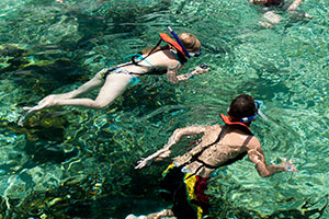Swimming with turtles in Grand Cayman